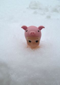 Sonny angel in the snow