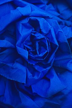 *Blue Rose DIY with paper ymmd IsaRtfulfairytale