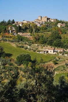 Castellina in Chianti, Tuscany, Italy. Spent a few days on a working vineyard here. Amazing!