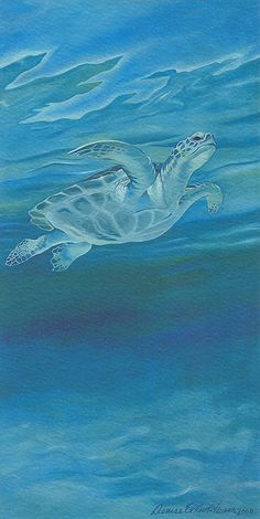 Green Sea Turtle byDenise Elliot-Vernon