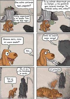 Funny Love Cartoons Sad Ideas For 2019 Sad Comics, Cute Comics, Funny Comics, Funny Cartoons, Animal Memes, Funny Animals, Cute Animals, Tumblr Funny, Funny Memes