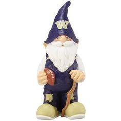 Washington Huskies Football Garden Gnome