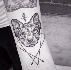 cat tattoos are the best tattoos