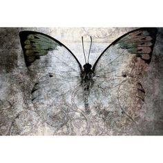 Schilderij butterfly