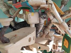 DomusfeliS special playzone for cats #catcastle #cattower #catcondo #sculptureforcat #cattoy #felinelovers #catlovers #catenclosure #petdesign #amazingcatstructure #catenclosure Cat Castle, Cat Enclosure, Cat Condo, Animal Design, Cat Toys, Cat Lovers, Toddler Bed, Sculpture, Cats