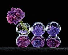 Jeff Leatham – Floral Artist.