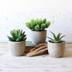 love these little ceramic pots.