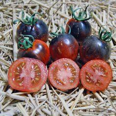 Blue Tomato Smokey Blue ブルートマト・スモーキー・ブルー