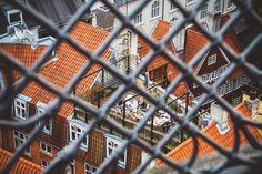 One day in Copenhagen. « Julia Davila-Lampe