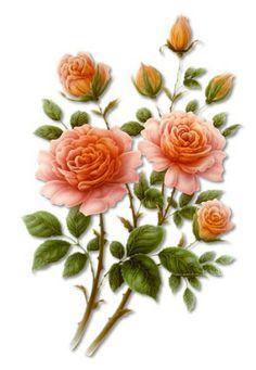 """Photo from album """"Art Flowers"""" on Yandex. Art Floral, Floral Vintage, Deco Floral, Vintage Diy, Vintage Flowers, Botanical Flowers, Botanical Prints, Flower Images, Flower Art"""