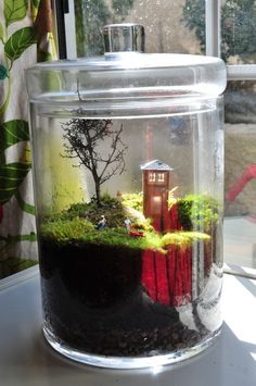 I love the Terrarium as a diorama
