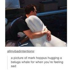 D'aww #blink182 #MarkHoppus