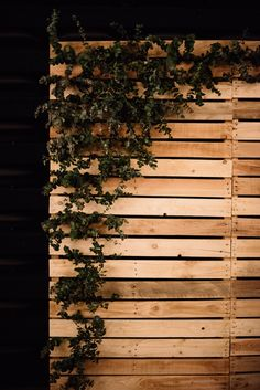 Photography: Trent & Jessie Photographers Place: Maitland Town Hall Vintage Antique Reception Wedding Romantic Fun Burgundy Wooden Pallet Timber Backdrop Photobooth Silver Gum Foliage Leaves Greenery Photo Booth
