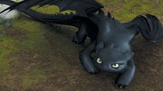 Krokmou / Toothless