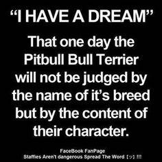 Saving pitbulls on Pinterest | Pitbulls, Pitbull and Pit Bull