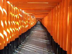 The vermilion torii gates at the Fushimi Inari Shrine in Kyoto, Japan  Helen Shipley of Wembley, Middlesex