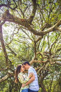E-session Aline e Davi. #esession #engadgement #couple #casal #tree #arvore #nature #natureza #wedding #green