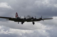 Boeing B-17 Flying (N5017N)