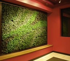 Bright Green Living Wall