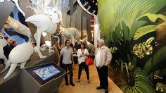biomuseo panama - Google Search