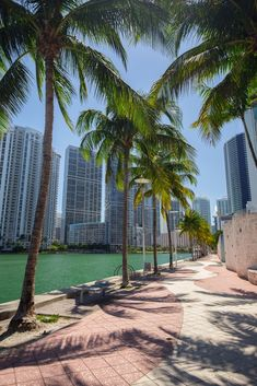 Where to Stay in Miami - Neighborhoods & Area GuideYou can find Miami beach and more on our website.Where to Stay in Miami - Neighborhoods & Area Guide Visit Florida, Destin Florida, Florida Travel, Travel Usa, Miami Florida Vacation, Travel Tips, Vacation Deals, State Of Florida, Air Travel