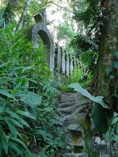 """Las Pozas is near the village of Xilitla, San Luis Potosí, a 7 hour drive N of Mexico City. In the early 1940s, James went to LA, & he """"wanted a Garden of Eden set up . . . & I saw that Mexico was far more romantic"""" and had """"far more room than there is in crowded Southern CA."""" In Cuernavaca, he hired a guide. They found Xilitla in Nov. 1945. He married a local woman & had 4 children."""