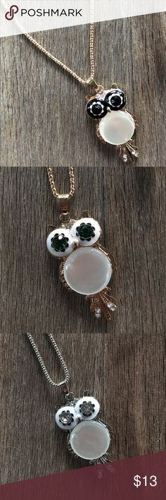 GORGEOUS OWL NECKLACE Gorgeous necklace. Perfect for this upcoming fall. Comment your favorite color of necklace & owl!  Jewelry Necklaces