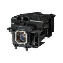 Electrified Replacement Lamp with Housing for M260X NEC Projectors - 150 Day Electrified Warranty by Electrified. $162.56. BRAND NEW PROJECTION LAMP WITH BRAND NEW HOUSING FOR NEC PROJECTORS - 150 DAY ELECTRIFIED WARRANTY - 150 DAY ELECTRIFIED WARRANTY