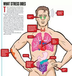What Stress Does