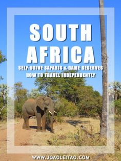 Ultimate Guide to Self-Drive Safaris in South Africa Parks & Game Reserves. Explore South Africa's best animal spots with car rental. Tips, prices, maps.