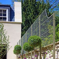 creative uses for garden trellises greenery dwarf and gardens