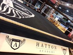 Hand painted boxing canvas for Hatton Boxing.