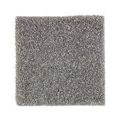 PetProof Whirlwind I - Color Tide Pool Texture 12 ft. Carpet-0637D-37-12 - The Home Depot