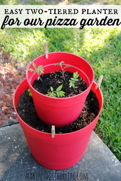 An easy, two-tiered planter for our pizza garden!  Uses bright colored plastic pots instead of heavy terra cotta - great idea!