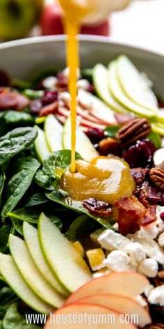 Autumn Apple Salad (with a Maple Vinaigrette) Maple Vinaigrette, Cranberry Cheese, Salad Topping, Apple Salad, Supper Recipes, Best Appetizers, Tex Mex, Side Dishes, Salads