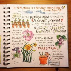All 3 pages of my allotment journal for March can be seen on my blog. Link in my…