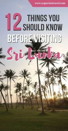 """Yogawinetravel.com: 12 Things You Should Know Before Going to Sri Lanka. To quote Condé Nast Traveler, """"Sri Lanka Is Ready for Its Close-Up"""". If you're planning a trip, here are 12 things to know before going to Sri Lanka including visa requirements, what to do and see in Sri Lanka, how to get around and the best time to visit!"""