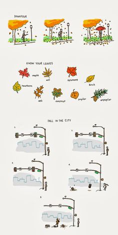 Fall in the woods / Fall in the city.  Incidental Comics, Grant Snider. USA.