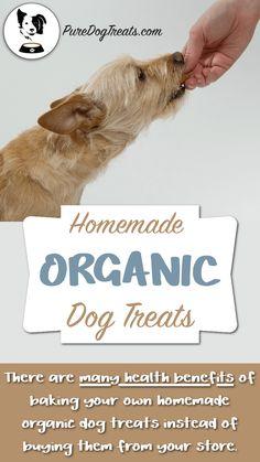 Healthy Dog Treats Homemade Organic Dog Treats: Jam-Packed Recipes With Healthy Nutrients! Diy Dog Treats, Homemade Dog Treats, Healthy Dog Treats, Dog Biscuit Recipes, Dog Treat Recipes, Dog Food Recipes, Food Tips, Recipes Dinner, Dog Training Methods
