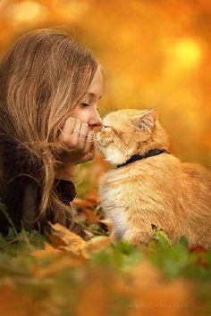 Entrusting your cats to a sitter while you leave town can be very stressful—and may not always go perfectly. But you can take steps that will help you find the best pet sitter possible. Here are a few things you should know about choosing a cat sitter. Animals For Kids, Animals And Pets, Cute Animals, Crazy Cat Lady, Crazy Cats, I Love Cats, Cute Cats, Cat Sitter, Tier Fotos