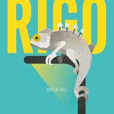 """Recensione: Rigo, """"Water Hole"""""""