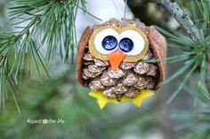 Pinecone Owl Ornament - Repeat Crafter Me Pinecone animal Crafts, Christmas owl Pinecone Crafts idea, 2013 Christmas Pine cone ornaments DIY Pinecone Owls, Pinecone Ornaments, Owl Ornament, Diy Christmas Ornaments, Christmas Decorations, Pinecone Decor, Pinecone Christmas Crafts, Owl Decorations, Homemade Ornaments