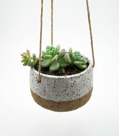 Hanging planter by Susan Simonini