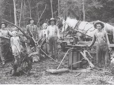 """""""For pioneers, farming started with stump clearing. A crew pauses at the site pulling stumps, Stearns County abt. 1900"""""""