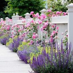 Flowers in front and through a white picket fence. Garden Spaces - traditional - landscape - other metro - dabah landscape designs. Chicago Landscape, Fence Landscaping, Landscaping Software, Landscaping Contractors, Luxury Landscaping, Landscaping Company, California Front Yard Landscaping Ideas, Front Walkway Landscaping, Landscaping With Roses