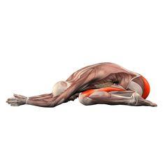 Hare pose - Shashankasana - Yoga Poses | YOGA.com