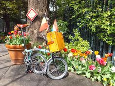 Tour De Holland to Flanders, Belgium in Tokyo | Tokyo By Bike - Cycling News & Information from Japan