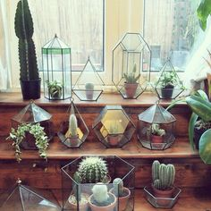 Inspiratie: cactussen in huis
