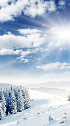 Wallpaper iPhone/winter/nature ⚪