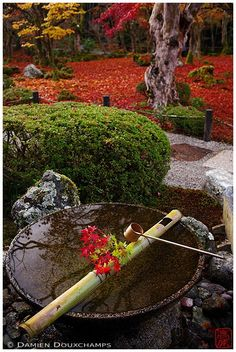 """https://flic.kr/p/QscJ8q 